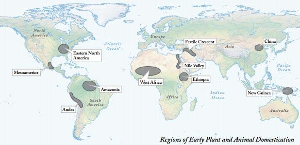 World History For Us All: Big Era 4